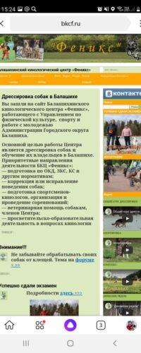 seo продвижение сайта заказать +в москве